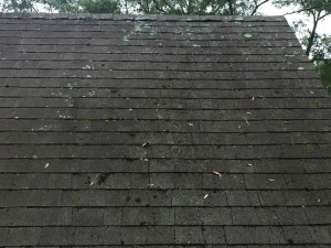 roof cleaning pensacola