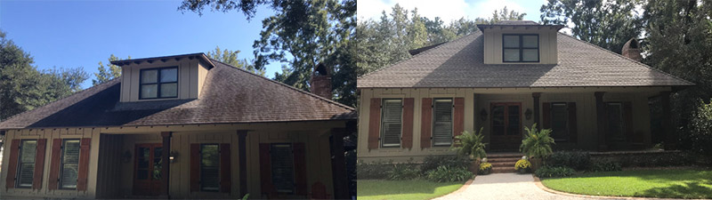 roof cleaning daphne al